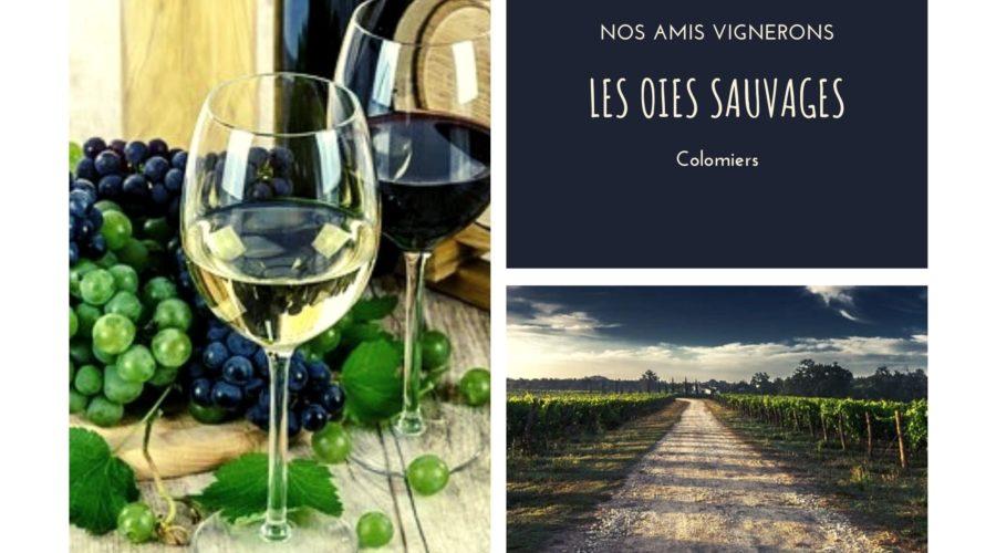 Les Vignerons de Saint Sardos